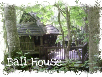 bali house web