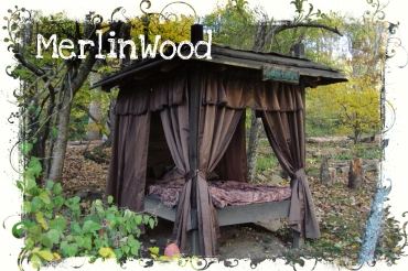 MerlinWood Web