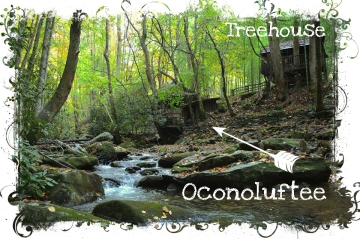 treehouse and Oconoluftee web