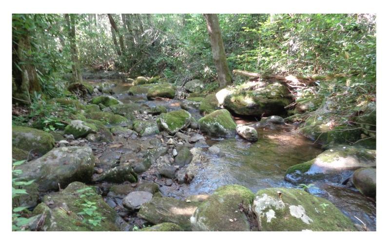 river mca narnia